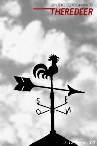 silhouette, www.theredeer.it, clubfotografia.com