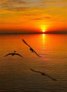 Ecco il tramonto per concludere in bellezza (ph.: Daniela Giovannini)