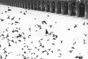 Venezia, P.za San Marco, 1960 (G. Berengo Gardin, tutti i diritti riservati)