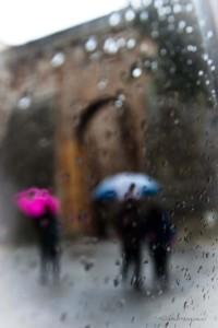 Foto Sfocata (foto di Catia Menacci)