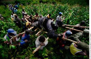"""Brent Stirton, """"The violation of Eden"""" (courtesy of festivaldellafotografiaetica.it/)"""