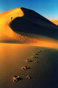 Foto di W. Bonatti, Deserto del Namib, Namibia. 1972 (courtesy of http://www.clponline.it)