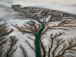 Il delta del Colorado in questa foto di Edward Burtynsky (2011)
