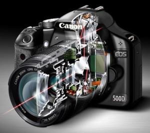 Schema di funzionamento dell'AF sulla Canon EOS 500D (fonte: canon-usa.com)